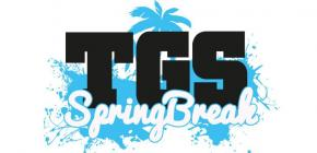 TGS Springbreak 2018 - édition de printemps du Toulouse Game Show