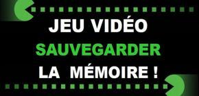 Conservation du patrimoine vidéoludique Quels enjeux ? Quels acteurs ?