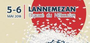 GeeTaku 2018 - 5ème festival de Culture asiatique des Hautes Pyrénées