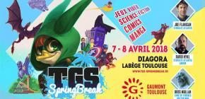 TGS Springbreak 2018 - édition de printemps du Toulouse Game Show