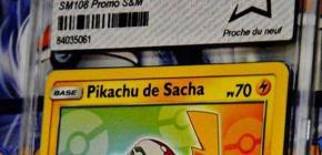 Vente aux enchères de cartes Pokémon à Drouot