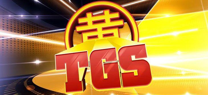 Toulouse Game Show 2015 - entre prudence et enthousiasme