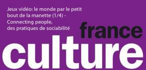 France Culture - les pratiques de sociabilité dans le jeu vidéo