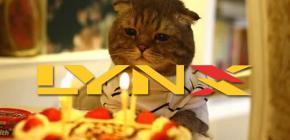 La Lynx d'Atari fête ses 25 ans dans l'indifférence générale