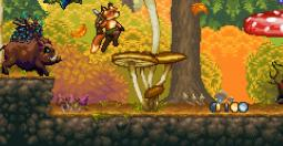 Fox n Forests - les saisons du plaisir